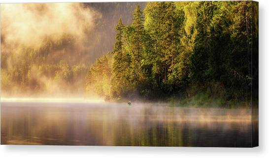 Fir Trees Canvas Print - Enjoying Nature by Daniel F.
