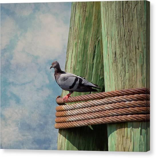 Charming Cottage Canvas Print - Enjoying The View by Kim Hojnacki