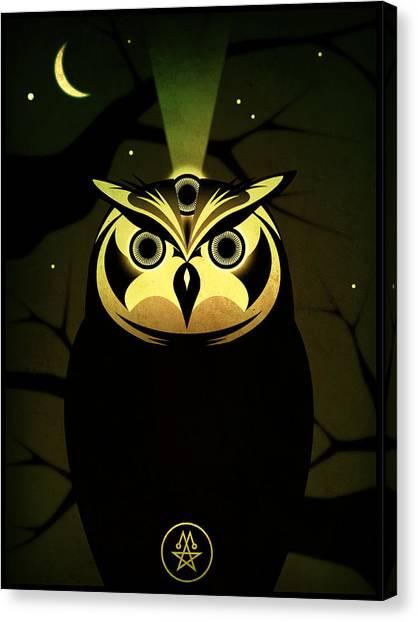 Enlightened Owl Canvas Print