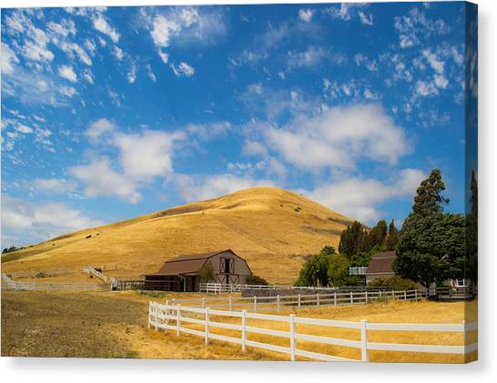 Entering The Napa Valley Canvas Print by Rima Biswas