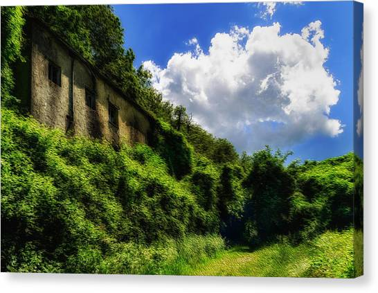Enveloping Vegetation On Abandoned Houses - Vegetazione Avviluppante Sulle Case Abbandonate Canvas Print
