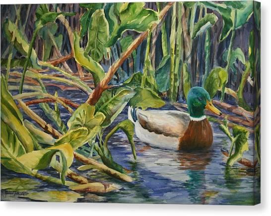 Environmentally Sound - Mallard Duck Canvas Print