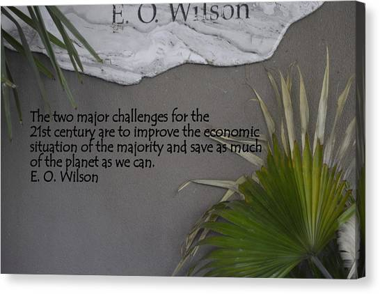 E.o. Wilson Quote Canvas Print