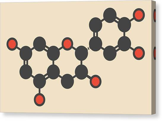 Mimosa Canvas Print - Epicatechin Molecule by Molekuul