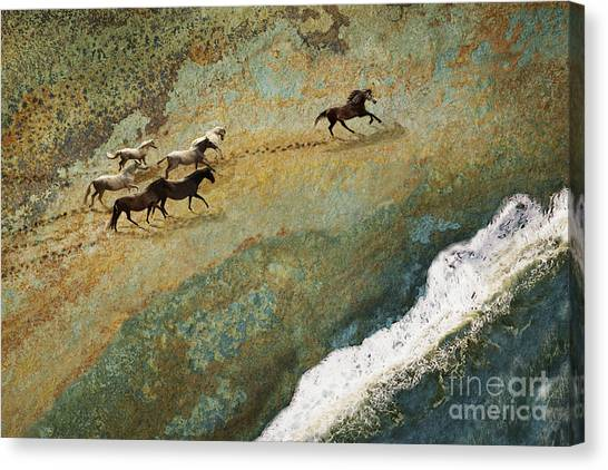 Canvas Print featuring the photograph Equine Seascape by Melinda Hughes-Berland