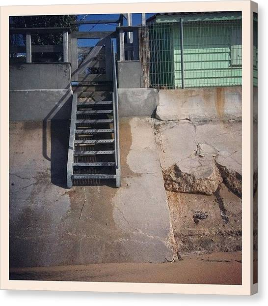 Ants Canvas Print - #escalier Dorénavant Accessible Aux by Sophie Ricq
