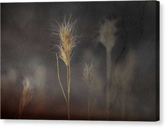 Escape Into The Background Canvas Print