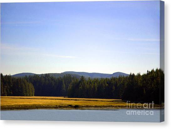Canvas Print featuring the photograph Estuary Near Nemah by Susan Parish