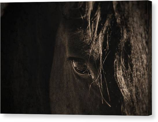 Eternal Eye Canvas Print