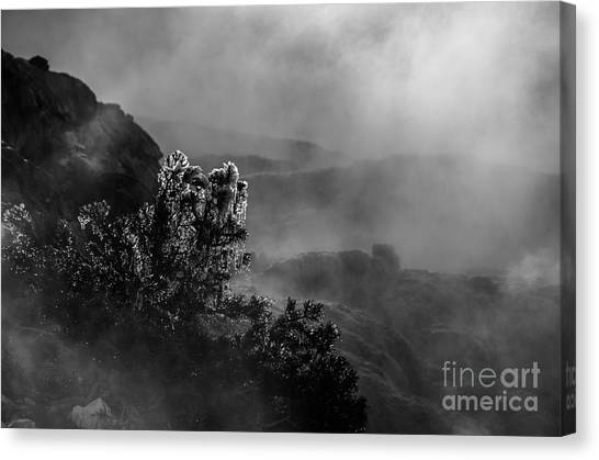 Ethereal Beauty In Black And White Canvas Print