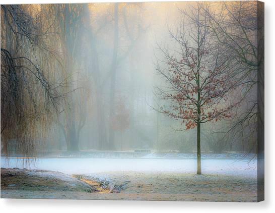 Foggy Canvas Print - Ethereal Daybreak by Marek Boguszak