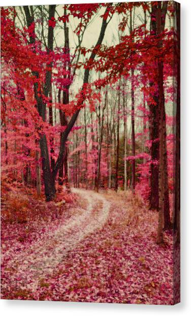 Ethereal Forest Path With Red Fall Colors Canvas Print