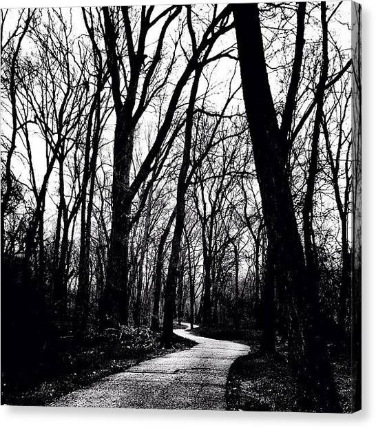 Forest Paths Canvas Print - even If I Walked In The Valley Of by Lee-o DeLeon