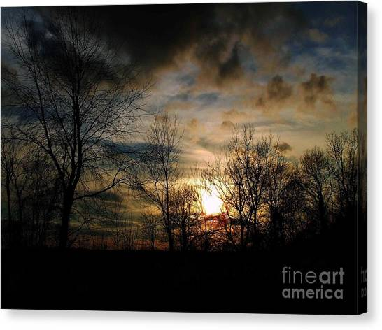 Evening Approach Canvas Print
