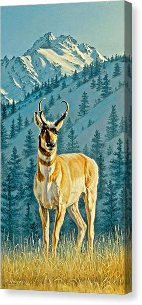 Yellowstone Canvas Print - Evening Below Electric Peak by Paul Krapf