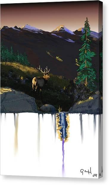Evening Elk Canvas Print