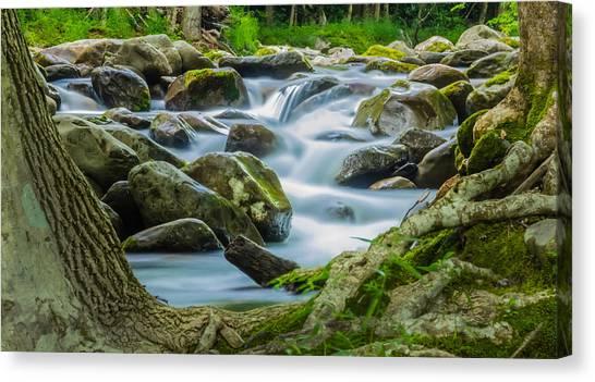 Evening Flow Canvas Print
