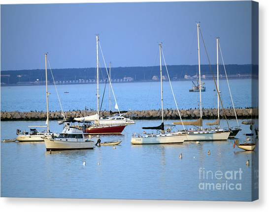 Evening I The Harbor Canvas Print