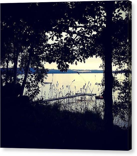 Large Mammals Canvas Print - Evening On The Lake by Jill Tuinier