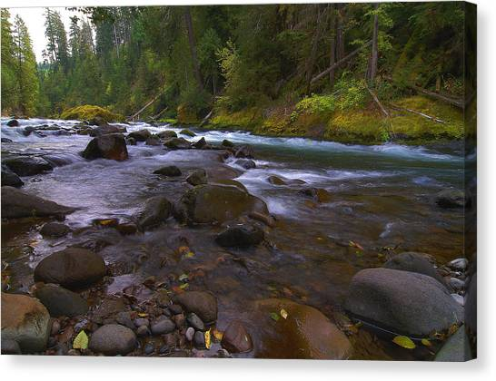 Evening On The Santiam River Canvas Print