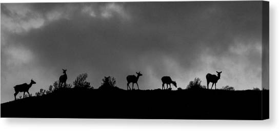 Evening Ridge Canvas Print