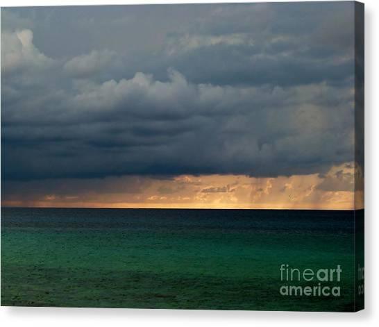 Evening Shadows Canvas Print