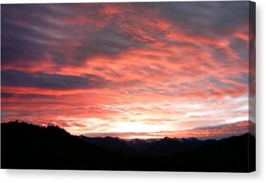 Evening Splendor  Canvas Print by William McCoy