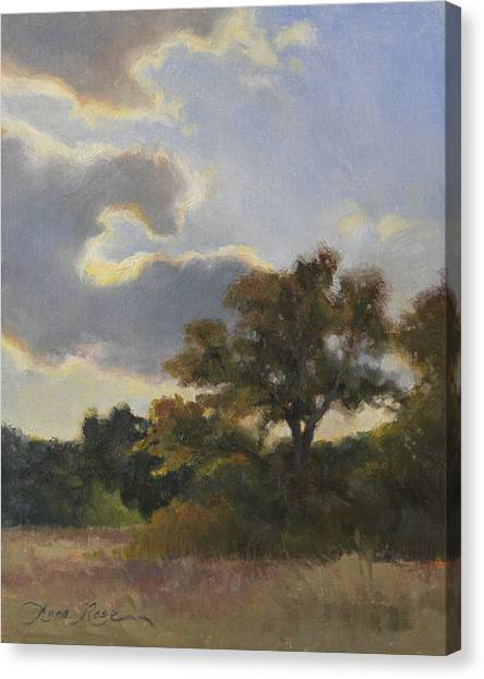 Plein Air Canvas Print - Evening Summer Clouds by Anna Rose Bain