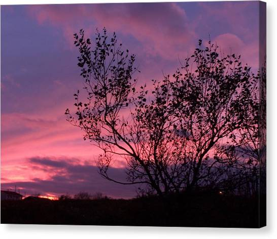 Evening Sunset Canvas Print