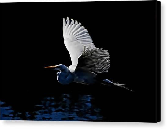 Evening Whisper Canvas Print