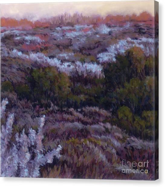 Evensong Canvas Print