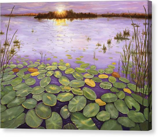 Everglades Evening Canvas Print