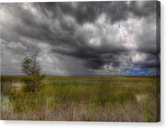Everglades Storm Canvas Print