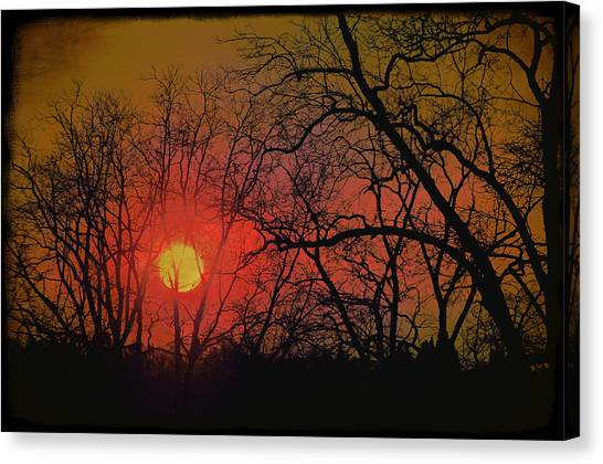 Every Night I Can Hear The Promise Of A Gentle Awakening Canvas Print by Jan Amiss Photography