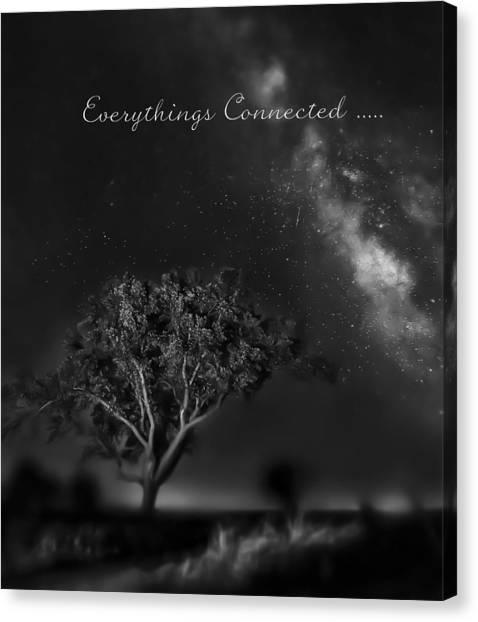 Everythings Connected Canvas Print