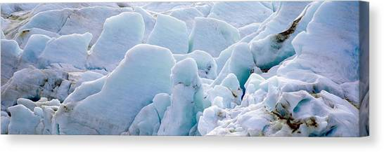Glacier Bay Canvas Print - Exit Glacier At Harding Ice Field by Panoramic Images