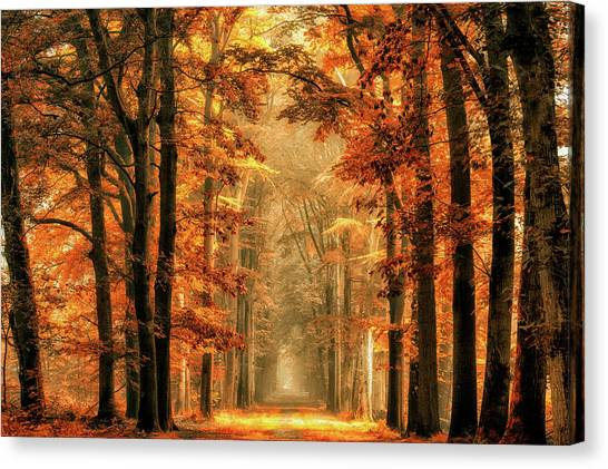Tunnels Canvas Print - Exit The Portal by Lars Van De