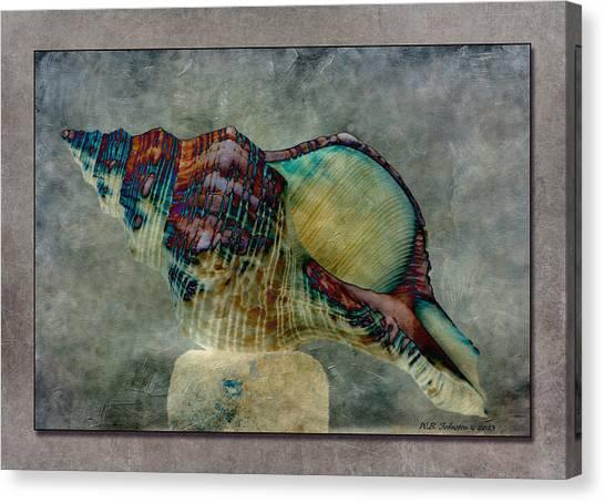 Exotishell 2 Canvas Print