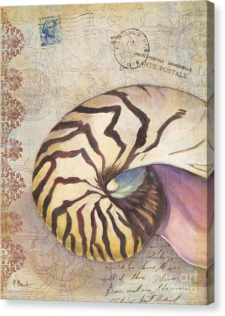 Conch Canvas Print - Expedition Shell I by Paul Brent