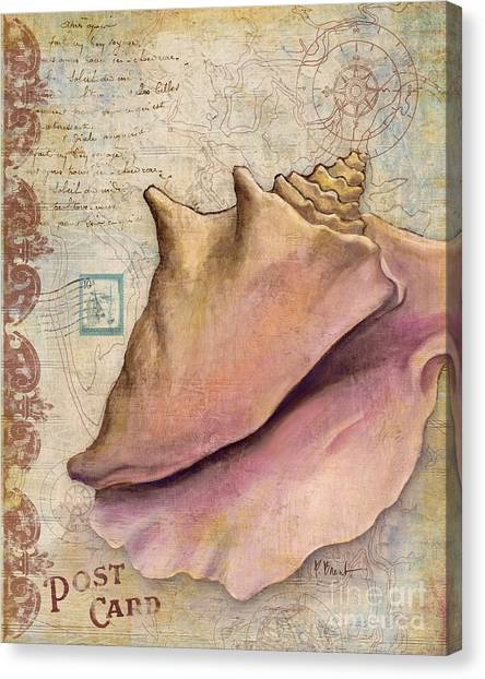 Conch Canvas Print - Expedition Shell IIi by Paul Brent