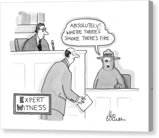 Smokey Canvas Print - 'expert Witness' by Leo Cullum