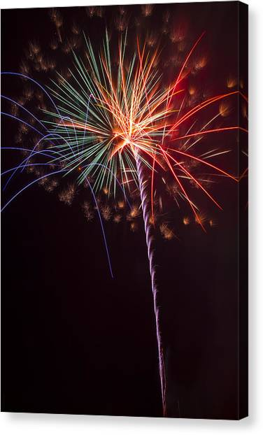 Pyrotechnics Canvas Print - Exploding Colors by Garry Gay