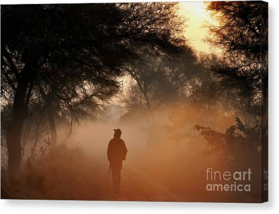 Explorer The Nature Canvas Print