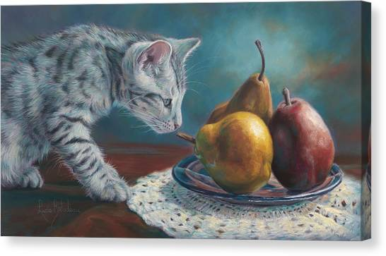 Bengals Canvas Print - Exploring by Lucie Bilodeau