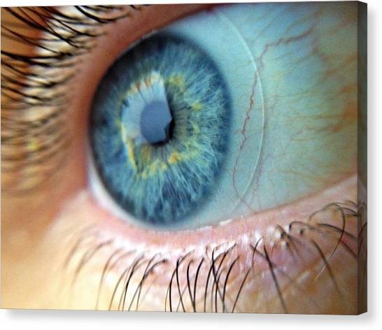 Extreme Close Up Of Human Eye Canvas Print by Miroslav Hlousek / Eyeem