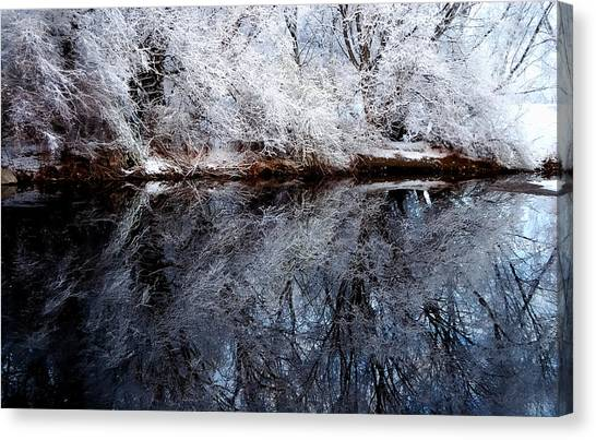 Extreme Reflections Canvas Print