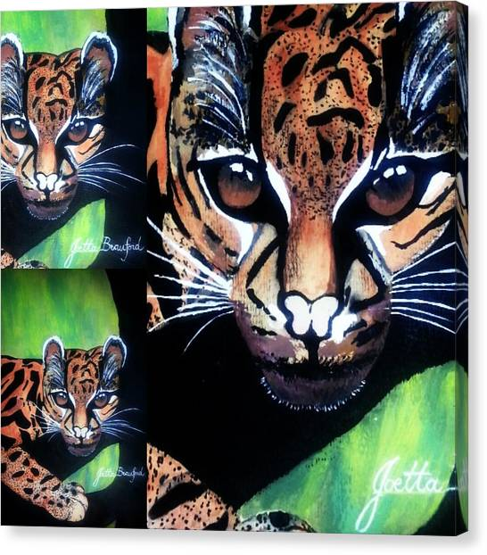 Eye Attraction Canvas Print