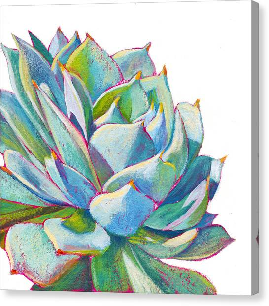 Botanical Canvas Print - Eye Candy by Athena Mantle Owen