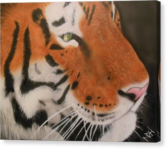 Eye Of A Tiger Canvas Print by Michael Hall