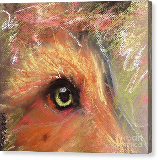 Eye Of Fox Canvas Print